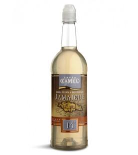 CAMEL JAMAIQUE 14ー LT 1