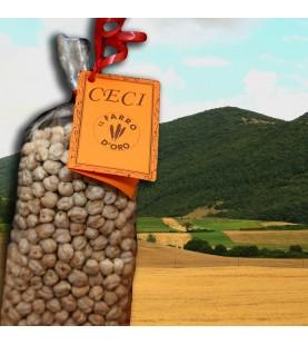 CECI SECCHI GR 500